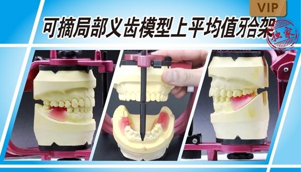 图片 可摘局部义齿模型上平均值颌架